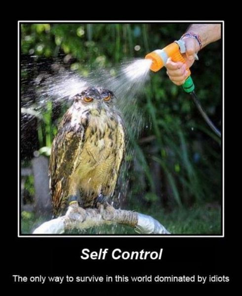 demotivators_picdump_640_14